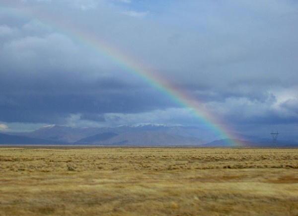 rainbow on the plains, a happy natural display in new zealand